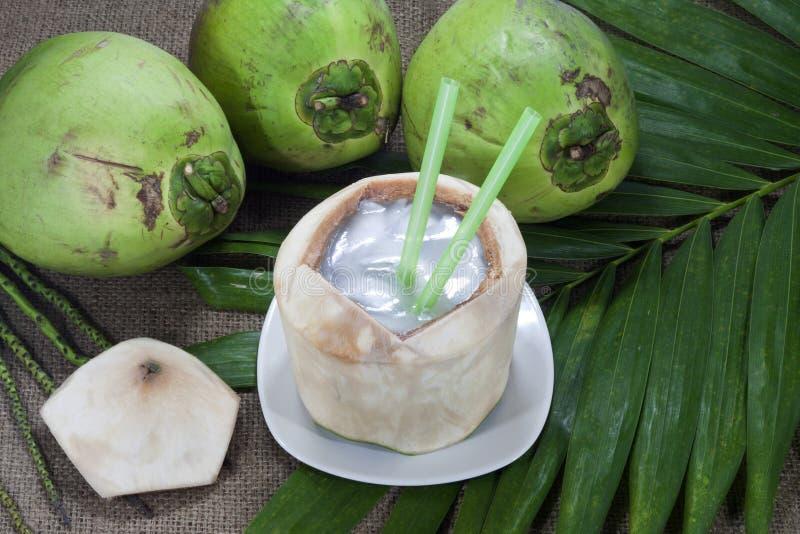 Gelée de noix de coco dans l'interpréteur de commandes interactif de noix de coco photographie stock
