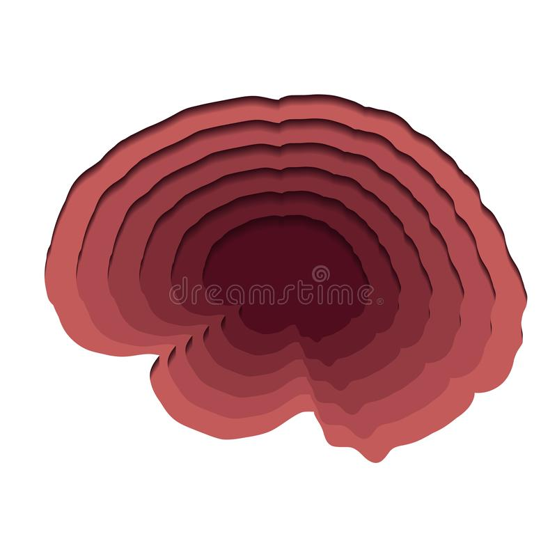 Gelaagde menselijke die hersenen van document op witte achtergrond worden verwijderd Document besnoeiingsorigami Vector 3d illust royalty-vrije illustratie