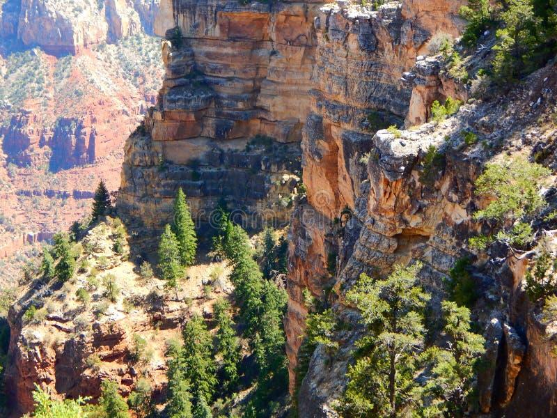 Gelaagde Rotsen in Grand Canyon royalty-vrije stock foto