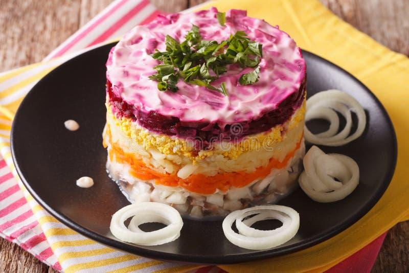 Gelaagde salade met haringen, bieten, wortelen, uien, aardappels en stock afbeeldingen