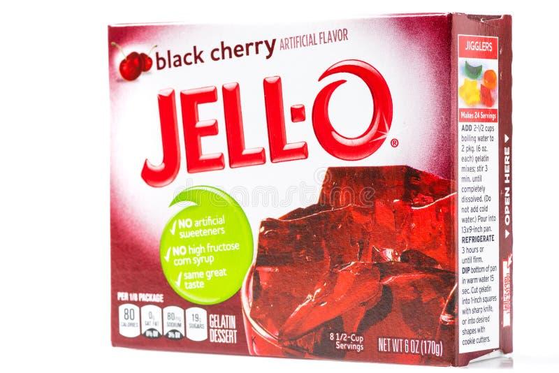 Gelatinizar-o o pacote da sobremesa de gelatina do sabor da baga do preto do tipo fotografia de stock royalty free