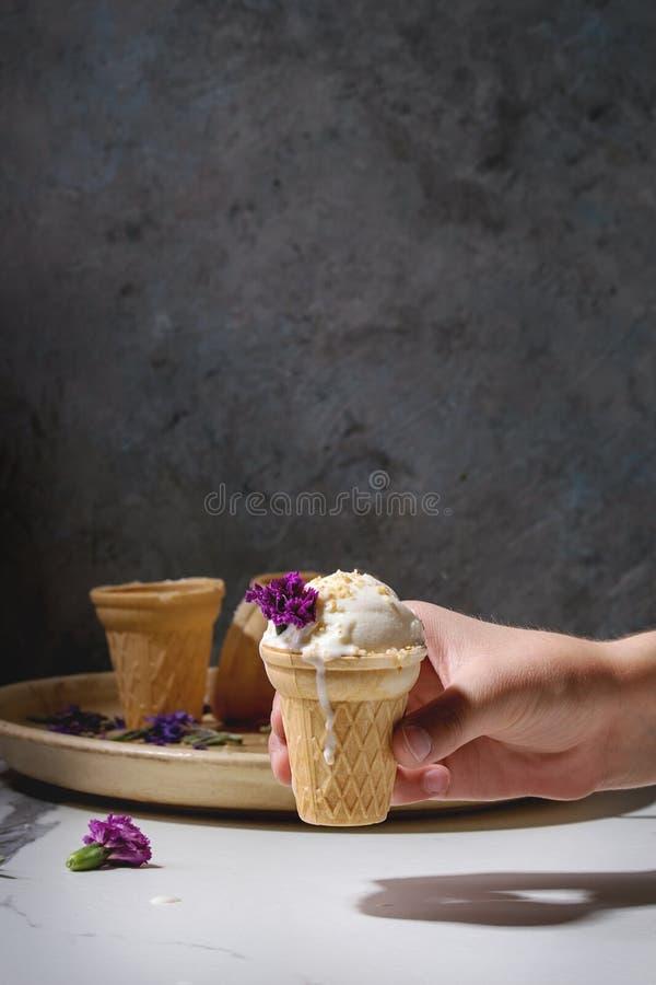 Gelato alla vaniglia fotografia stock libera da diritti