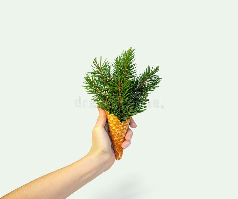 Gelato dell'albero di Natale in mano della donna sul fondo di Ligth Concetto di nuovo anno Composizione minima in festa Copi lo s fotografie stock