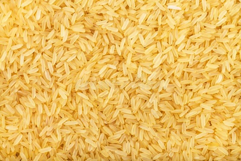 Gelb angekochter langkörniger Indica Reis stockfoto