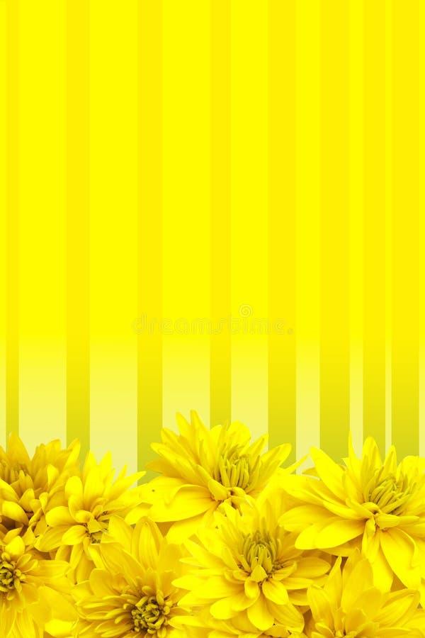 Gelb blüht Blumenblathintergrund stockbilder