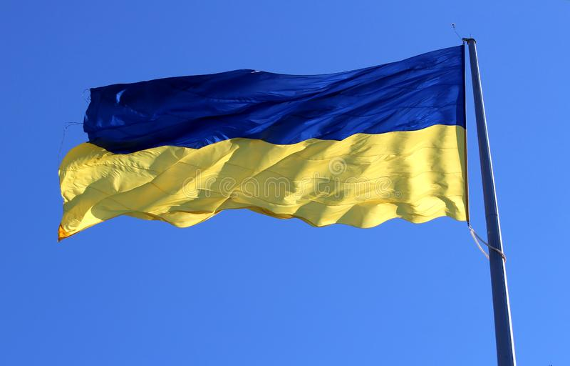 Gelb-blaue Staatsflagge von Ukraine wellenartig bewegend auf den Wind lizenzfreie stockbilder