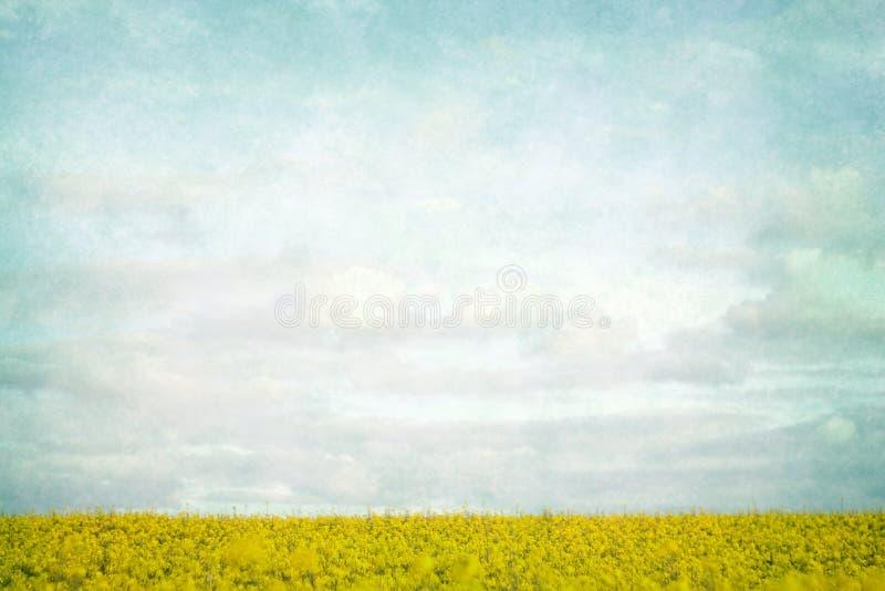 Gelb fängt Landschaft auf lizenzfreie stockfotos