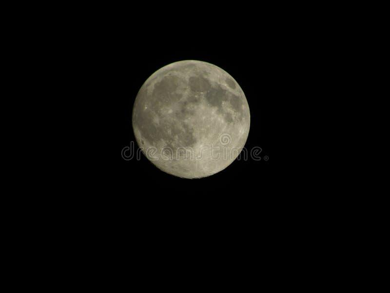 Gelb färbender Mond lizenzfreie stockbilder