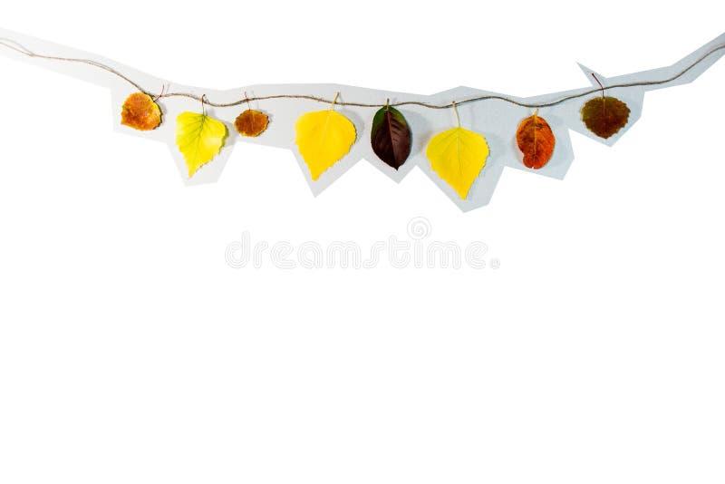 Gelb- und Rotweinblätter auf einer Saite lizenzfreie stockbilder