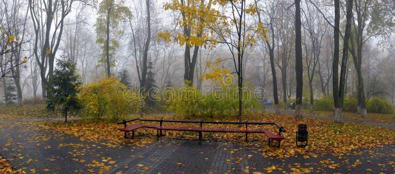 Gelb verlässt auf einer Bank im Park lizenzfreie stockbilder