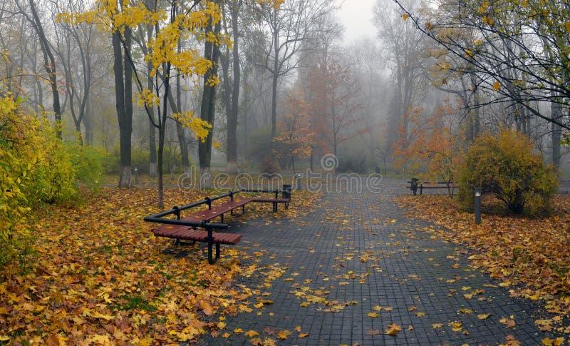 Gelb verlässt auf einer Bank im Park lizenzfreie stockfotografie