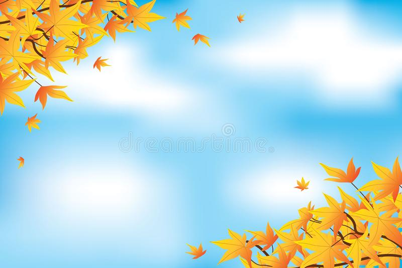 Gelbe Ahornblätter im Herbst mit Tageslicht im Hintergrund lizenzfreie abbildung