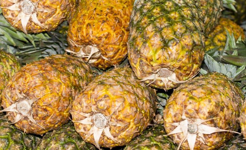 Gelbe Ananas lizenzfreie stockbilder