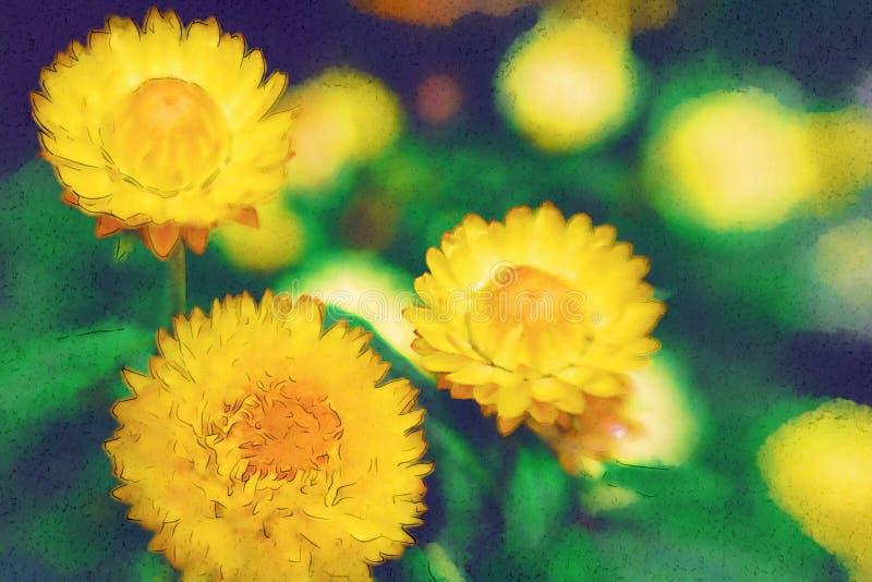 Gelbe Blume lizenzfreie abbildung