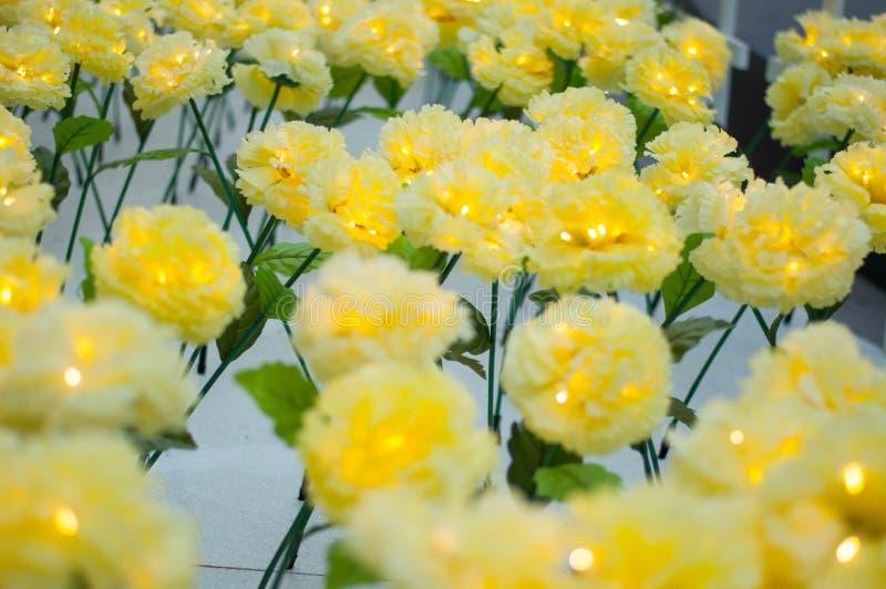 Gelbe Blume in Thailand stockbild