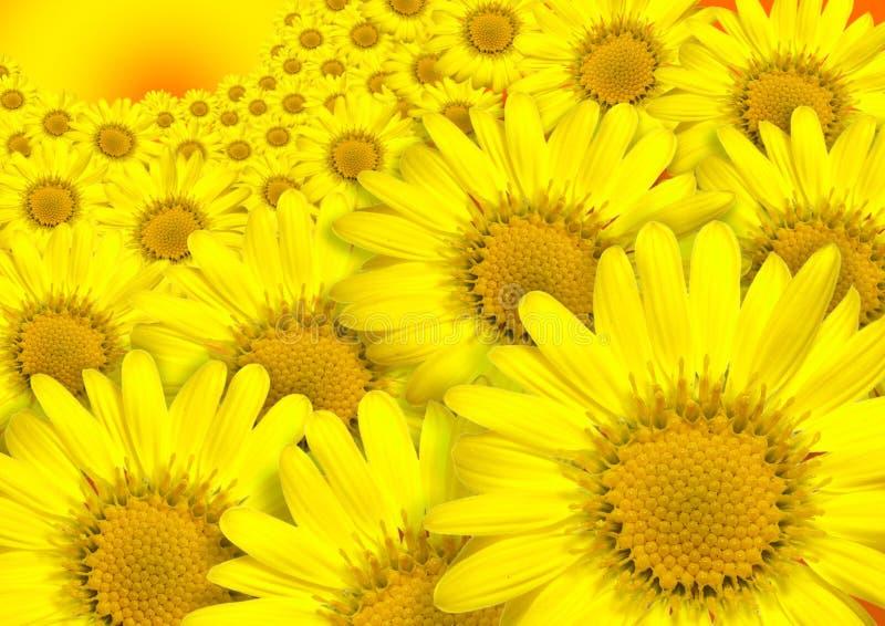 Gelbe Blumen stock abbildung