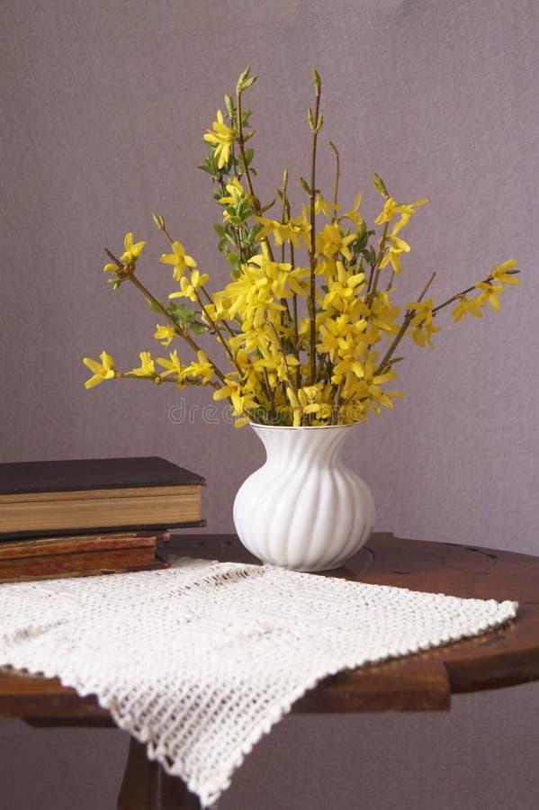 Gelbe Blumen des Frühlinges - Forsythie lizenzfreies stockbild