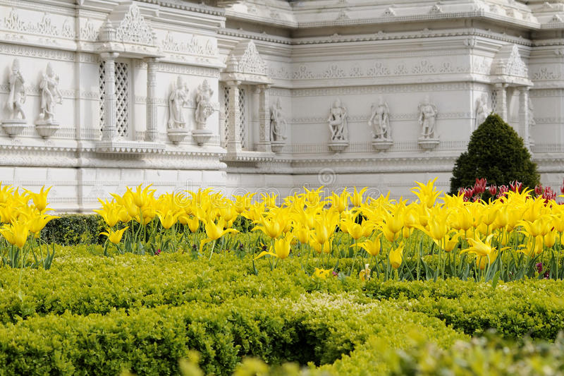 Gelbe Blumen des indischen Tempels von London Großbritannien lizenzfreies stockbild