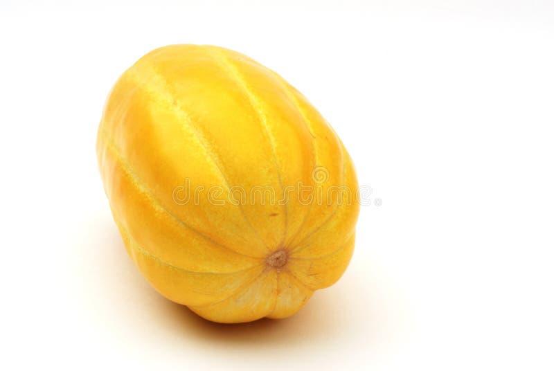 Gelbe chinesische Melone lizenzfreie stockfotografie