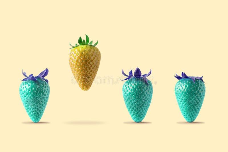 Gelbe Erdbeere, die mit blauer Erdbeere auf hellem Hintergrund schwimmt Minimales Lebensmittel-Konzept stockbild