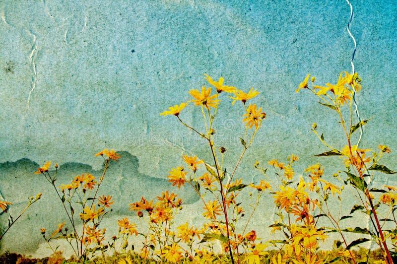 Gelbe Feld flowerses lizenzfreie abbildung