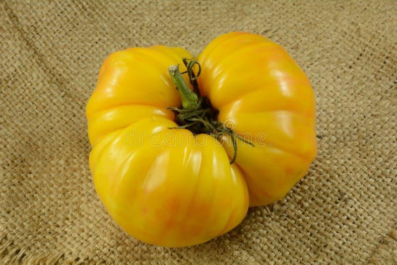 Gelbe Heirloom-Tomate stockbilder