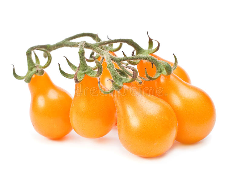 Gelbe Kirschtomate stockfotos