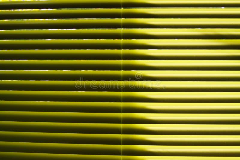 Gelbe Lamellen der Vertikaljalousie glänzend im natürlichen Sonnenlicht lizenzfreie stockfotos