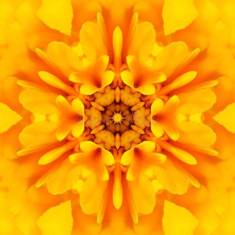 Gelbe Mandala Concentric Flower Center Kaleidoscope lizenzfreie stockfotos