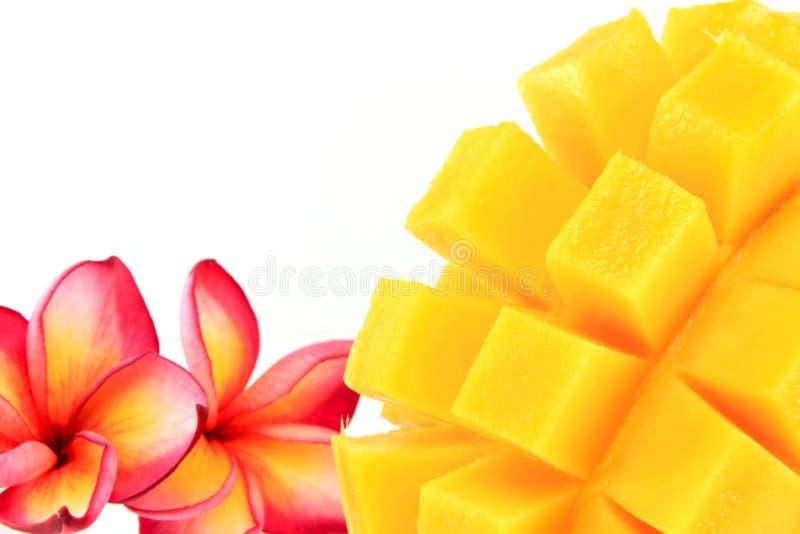 Mango   stockfotografie