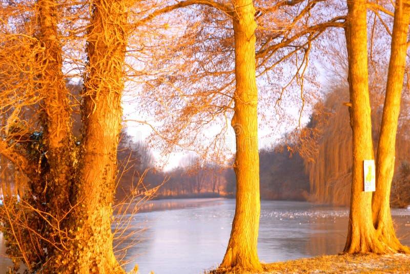 Gelbe Nacht auf dem Fluss-Flitzen stockbild