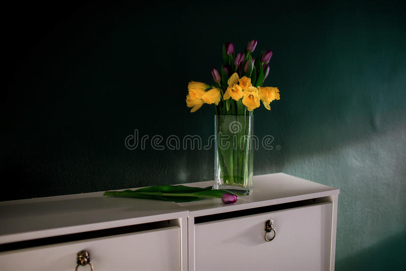Gelbe Narzisse blüht mit der purpurroten Tulpe, die im Vase mit folgendem bösem Korb der grünen Wand blüht stockfotos