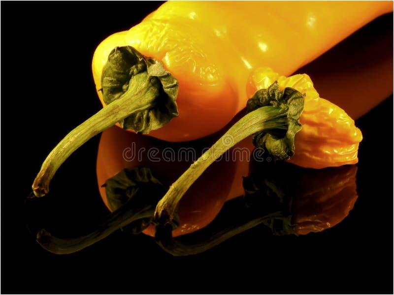 Gelbe Pfeffer, die alt werden stockfotos