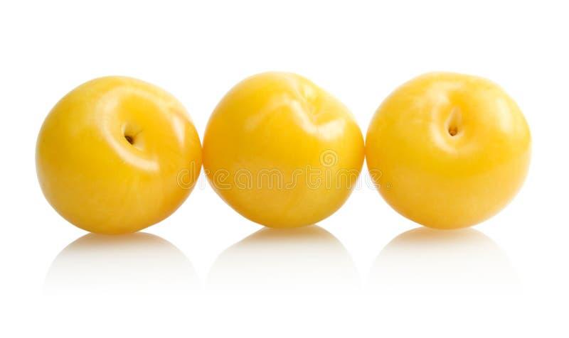 Gelbe Pflaumen lizenzfreie stockfotos
