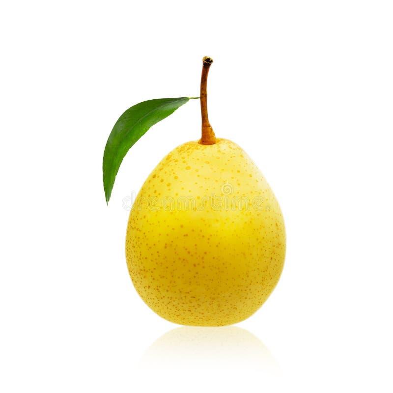Gelbe reife Birnenfrucht lokalisiert auf weißem Hintergrund, Beschneidungspfad stockbild