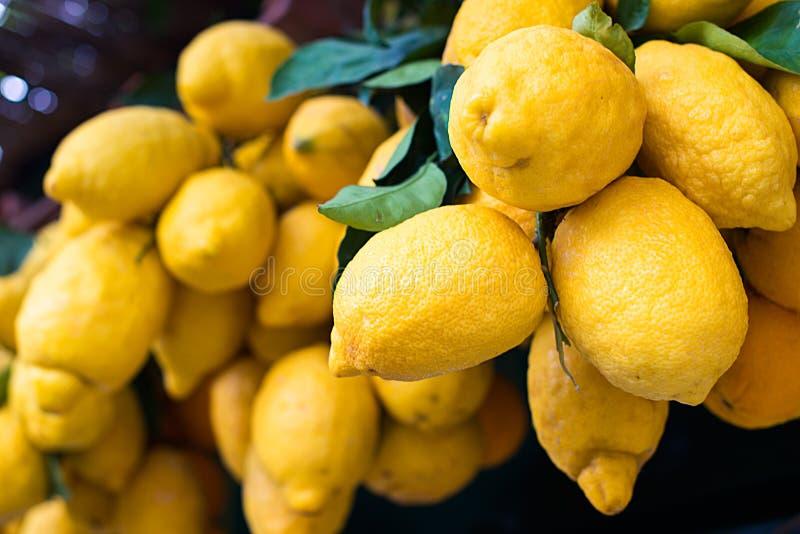Gelbe reife Zitronen mit Blättern lizenzfreie stockfotografie