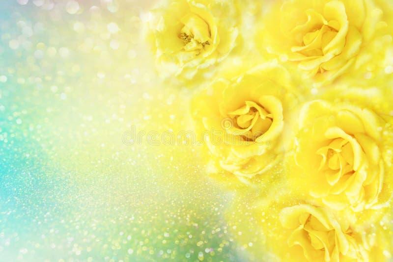 Gelbe Rosen blühen weichen Romanze Hintergrund mit schönem Funkeln lizenzfreie stockfotografie
