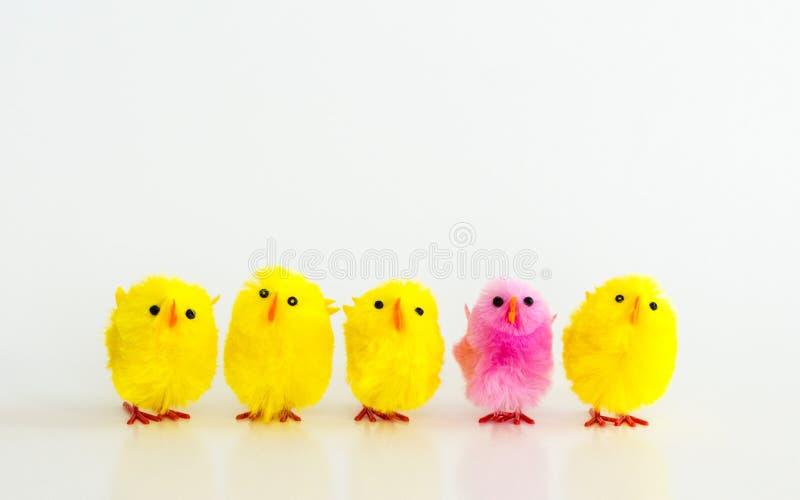 4 gelbe Spielzeug Ostern-Küken und 1 rosa Küken in Folge stockfoto