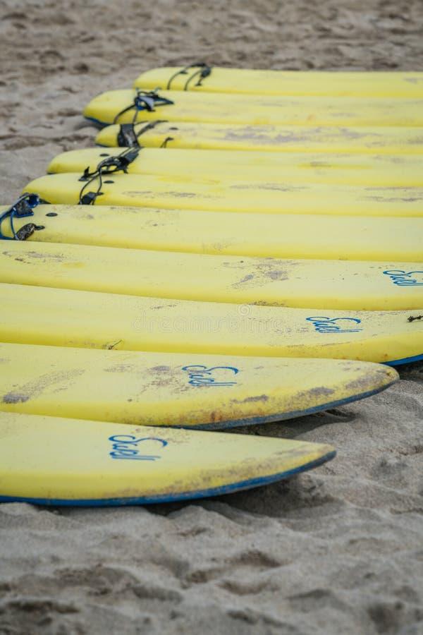 Gelbe surfende Bretter auf einem Strand lizenzfreies stockfoto