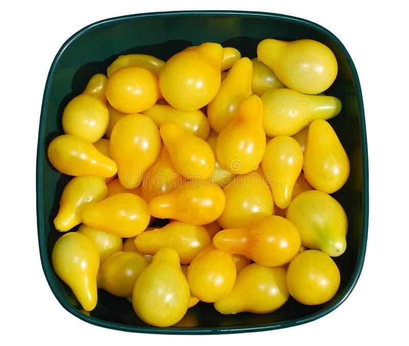 Gelbe Tomaten im Sonnenlicht lizenzfreie stockbilder