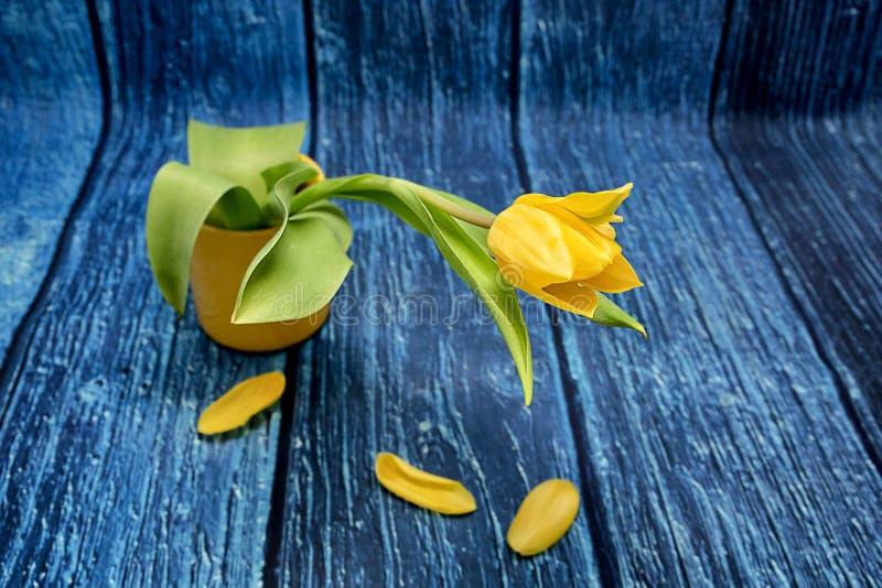 Gelbe Tulpe in einem gelben Glas lizenzfreies stockfoto