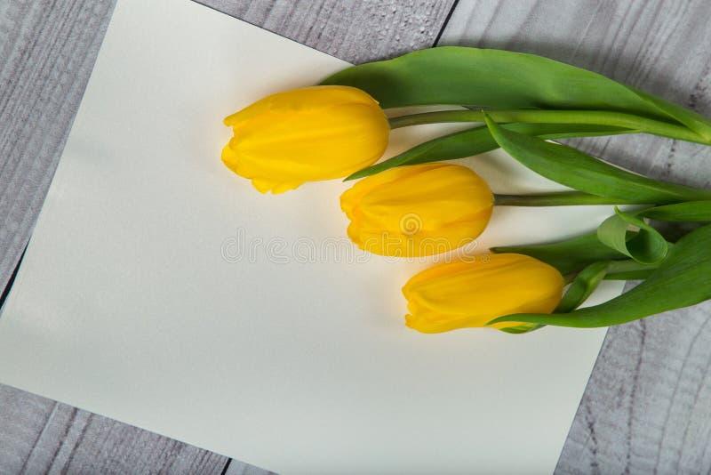 Gelbe Tulpen auf der Platte für die Kennzeichnung lizenzfreie stockbilder