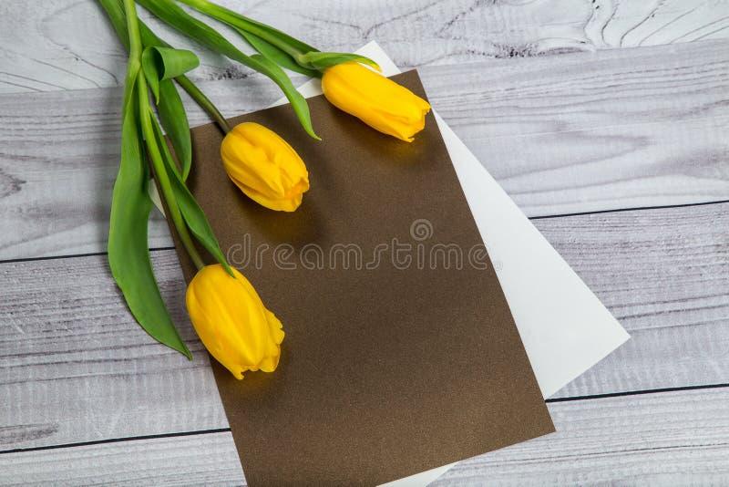 Gelbe Tulpen auf der Platte für die Kennzeichnung lizenzfreies stockbild