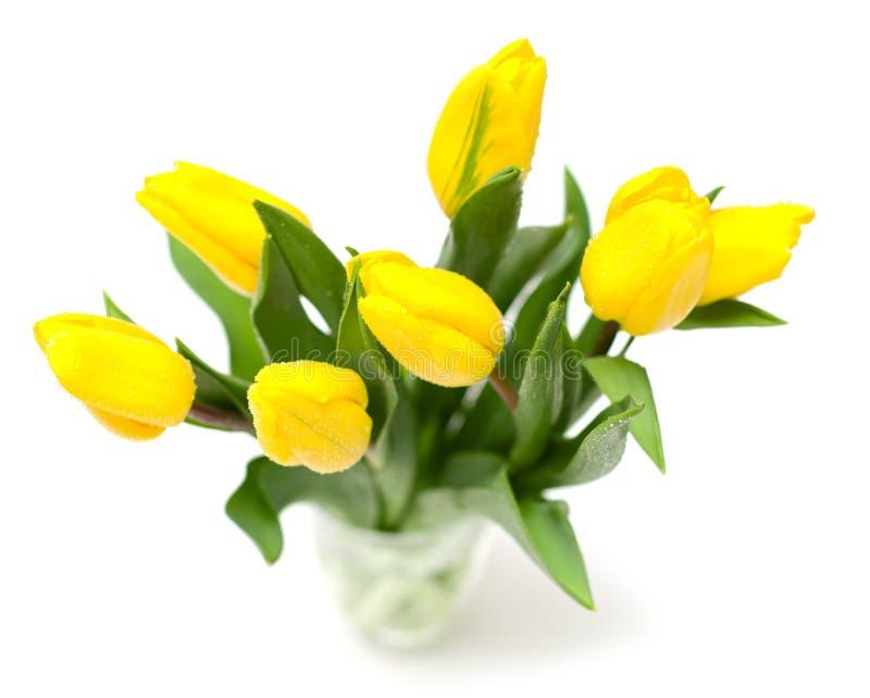 gelbe tulpen im glas stockfotos bild 18135183. Black Bedroom Furniture Sets. Home Design Ideas