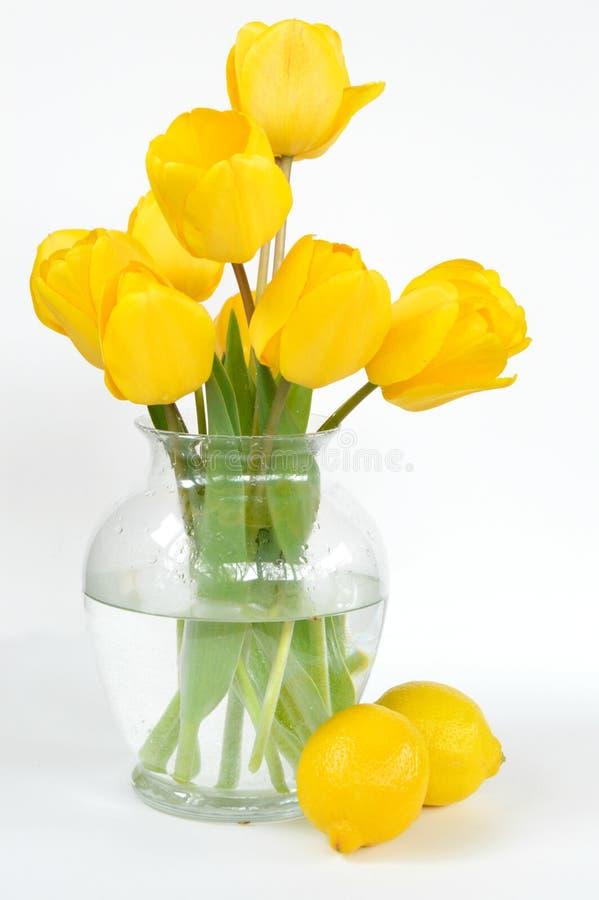 Gelbe Tulpen mit Zitronen lizenzfreie stockfotos