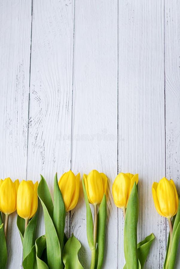 Gelbe Tulpenblumen auf weißem hölzernem Hintergrund Wartefrühling Glückliche Ostern-Karte Flache Position, Draufsicht Platz für T stockfotos