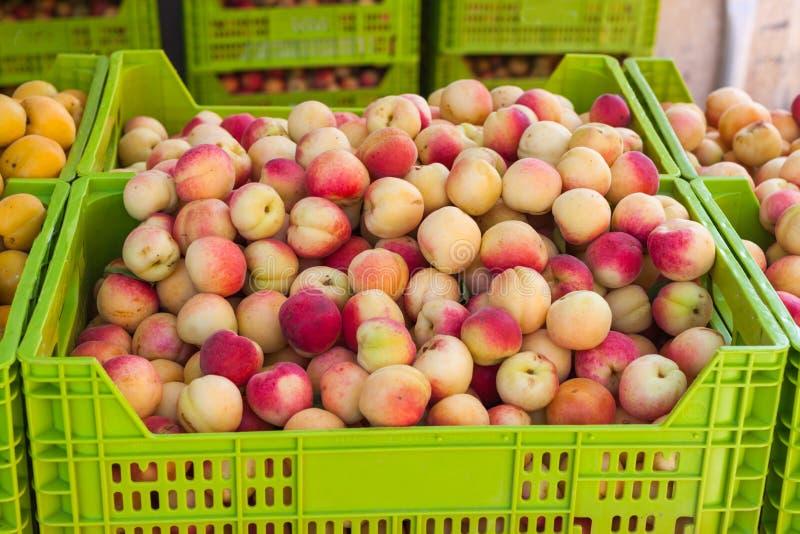 Gelbe und rote Aprikosen im Kasten für Verkauf auf der Aprikose angemessen in Porreres, Mallorca stockbilder