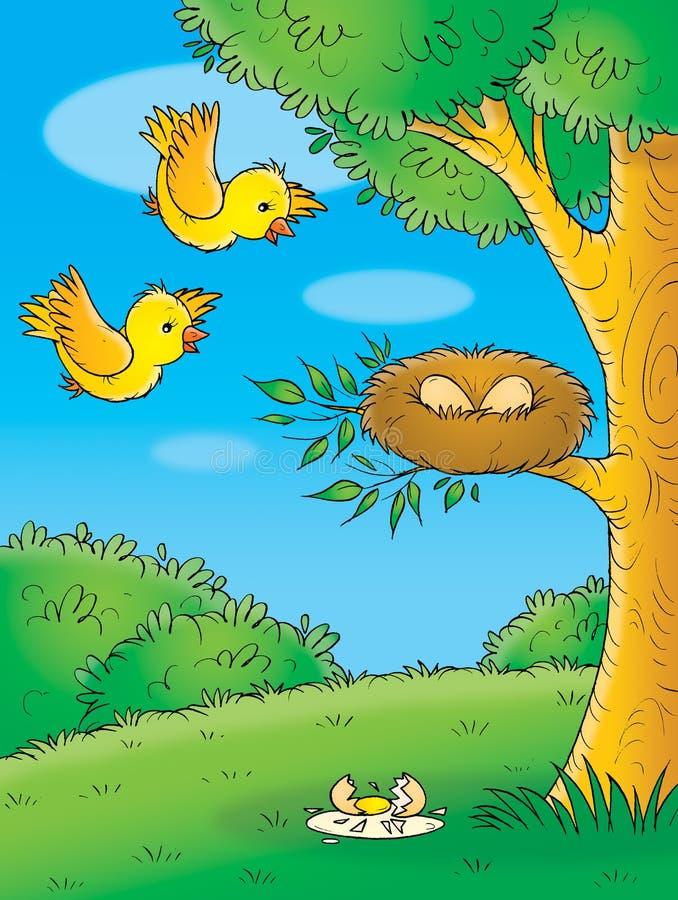 Gelbe Vögel stock abbildung