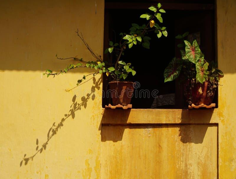 Gelbe Wand 2 stockfotografie