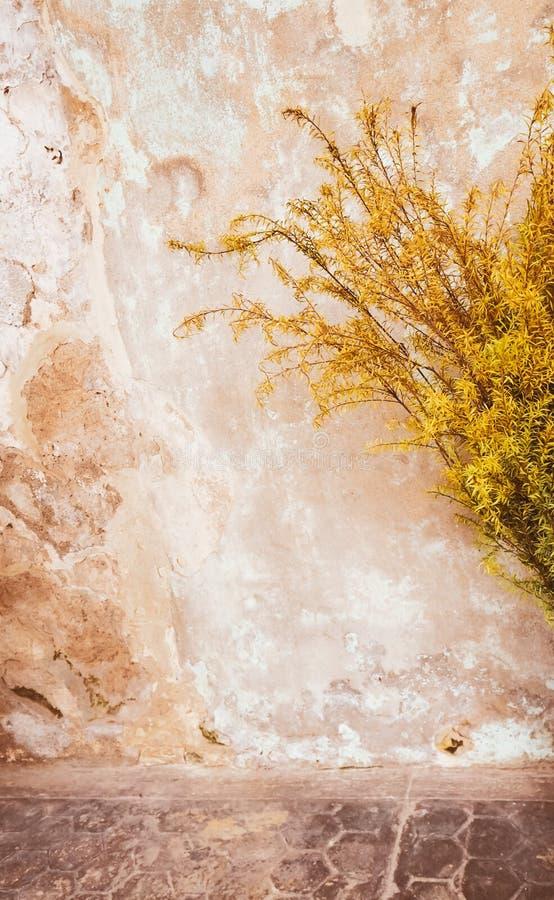Gelber alter schmutziger Betonmauerbeschaffenheit oder -hintergrund alter geknackter gelber Gips auf den Farben der Zement-Wand-d lizenzfreie stockbilder